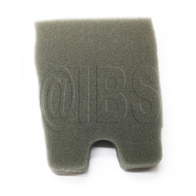 61110010A Sponge Filter